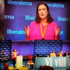 Birgitta Ohlsson argumenterar i landsmötesdebatten. Foto från Birgitta Ohlsson.