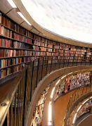 Böcker behövs. Bild: Peter Kuiper via Wikimedia.